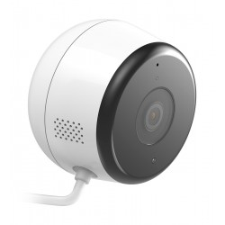 D-Link DCS-8600LH Surveillance Camera IP Security Camera Indoor and Outdoor Cube Ceiling Wall 1920 x 1080 Pixel