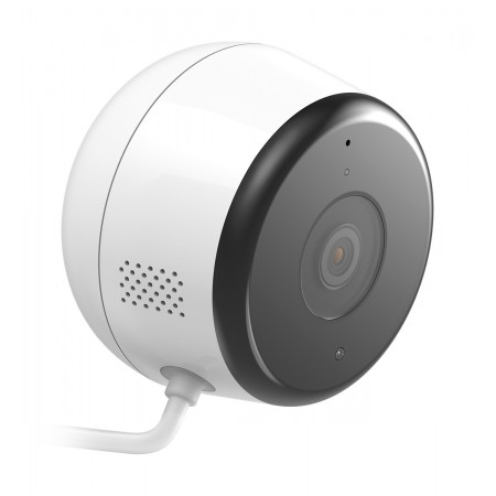 D-Link DCS-8600LH Surveillance Camera IP Security Camera Indoor and Outdoor Cube Ceiling / Wall 1920 x 1080 Pixel