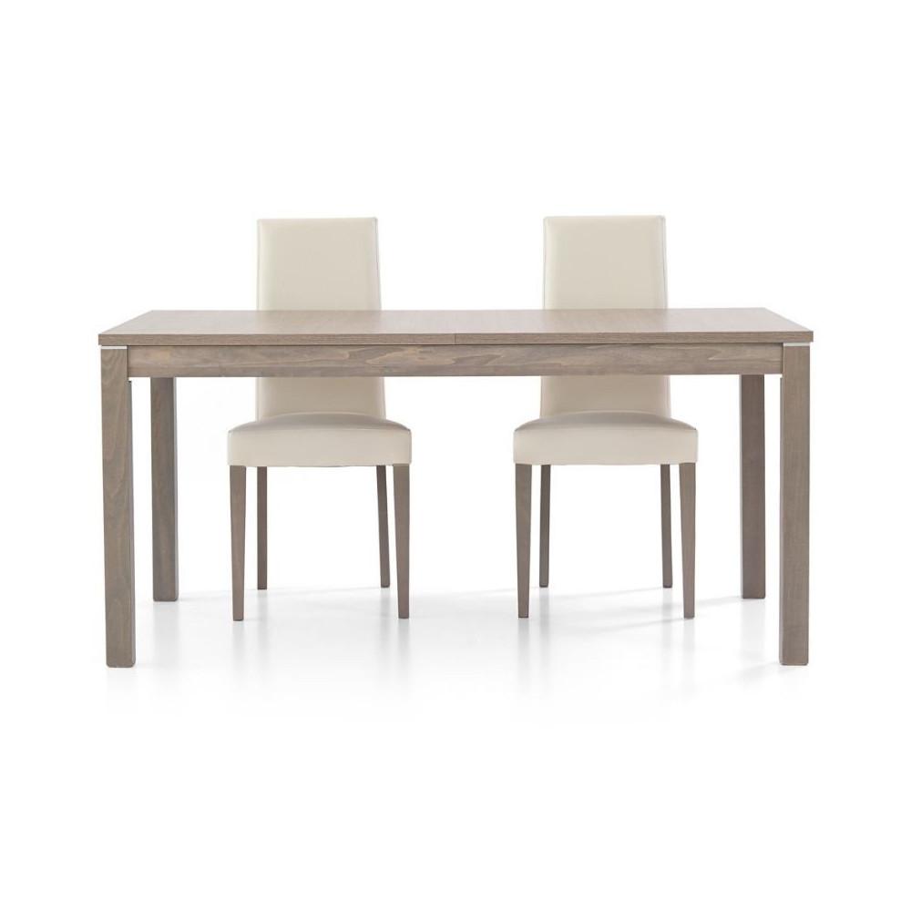 Fans 2 modern rectangular table in gray