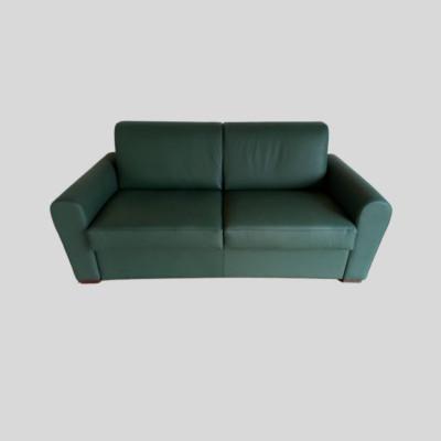 Denver sofa bed with electrowelded base